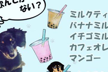杏ころcafe